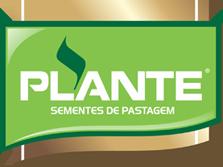 Plante Sementes de Pastagem
